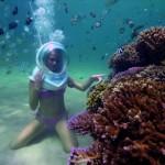 45. coral plantation smal